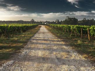 Peculiarità territoriali e climatiche della Puglia e della Calabria