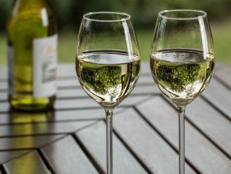 vini bianchi del sud italia