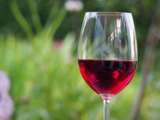 vini rossi alto adige